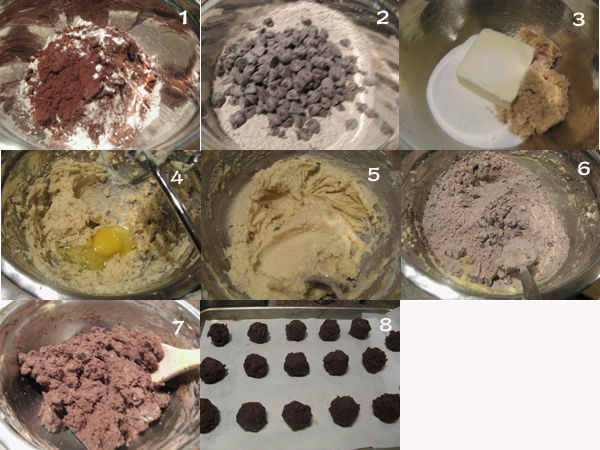 巧克力酥饼1 【巧克力酥饼】